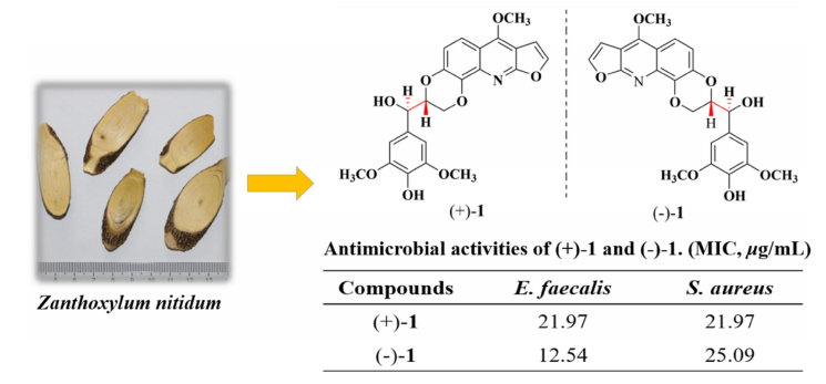 (±)-Zanthonitidine A, a Pair of Enantiomeric Furoquinoline